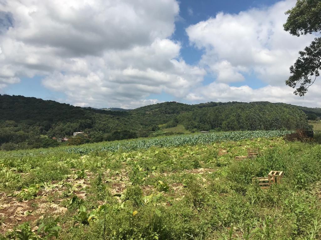l. lotes, fácil acesso, 10 km do centro de ibiúna, 1200mtrs
