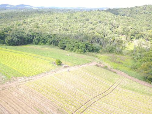 l. lotes, fácil acesso, 10 km do centro de ibiúna, 33 mil
