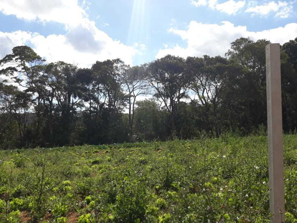 l. ótimo loteamento em ibiúna. todos os terrenos demarcados
