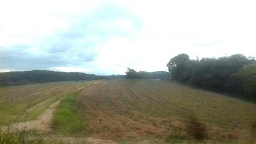 l terrenos 1000 m² já demarcados prontos para construir