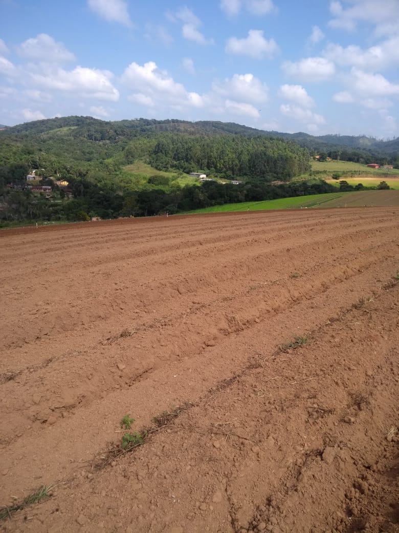 l. terrenos 90% planos em ibiúna, 600m2