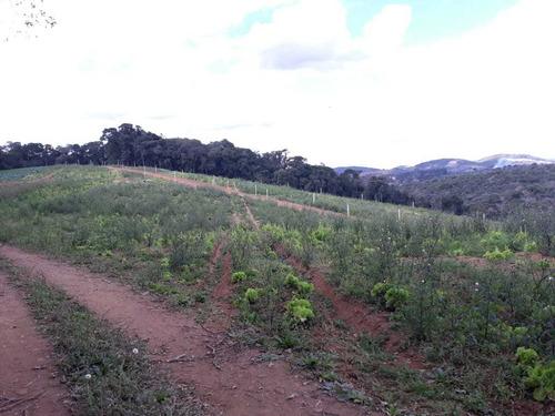 l. terrenos, condomínio rural. demarcados