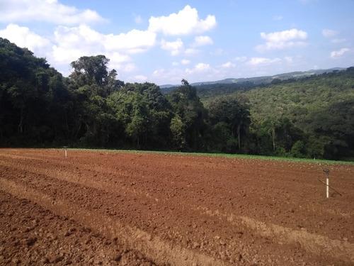 l. terrenos de 1200 = em ibiúna. planos e perto do centro