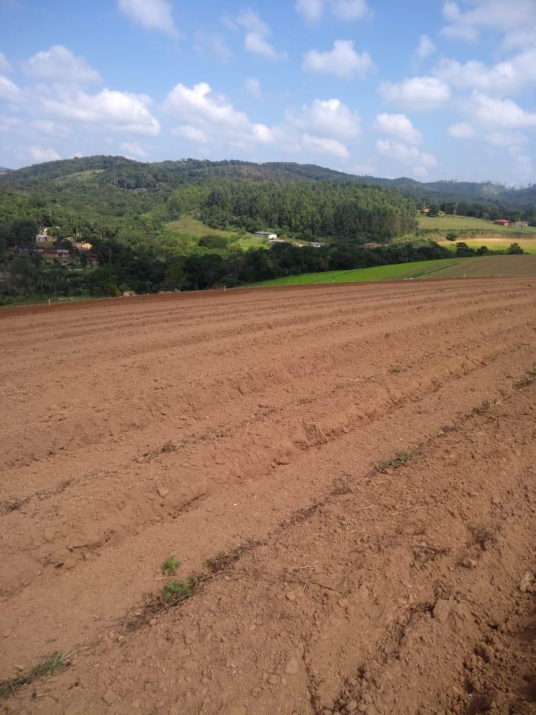 l. terrenos de 600m em ibiúna. planos e perto do centro