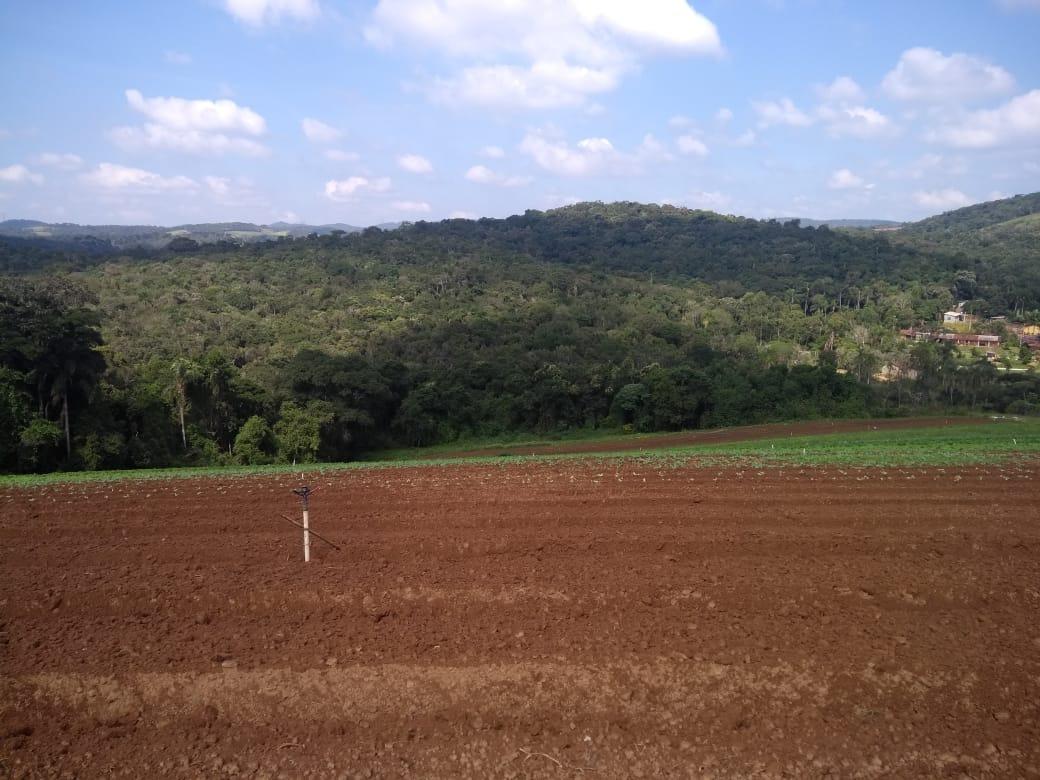 l. terrenos demarcados, ibiúna, 1200m2