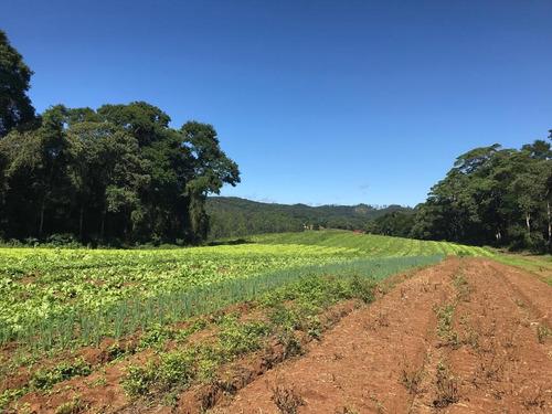 l. terrenos em ibiúna, 10km do centro