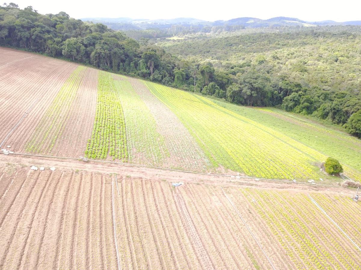 l. terrenos em ibiúna, boa localização 600m2 por 20mil