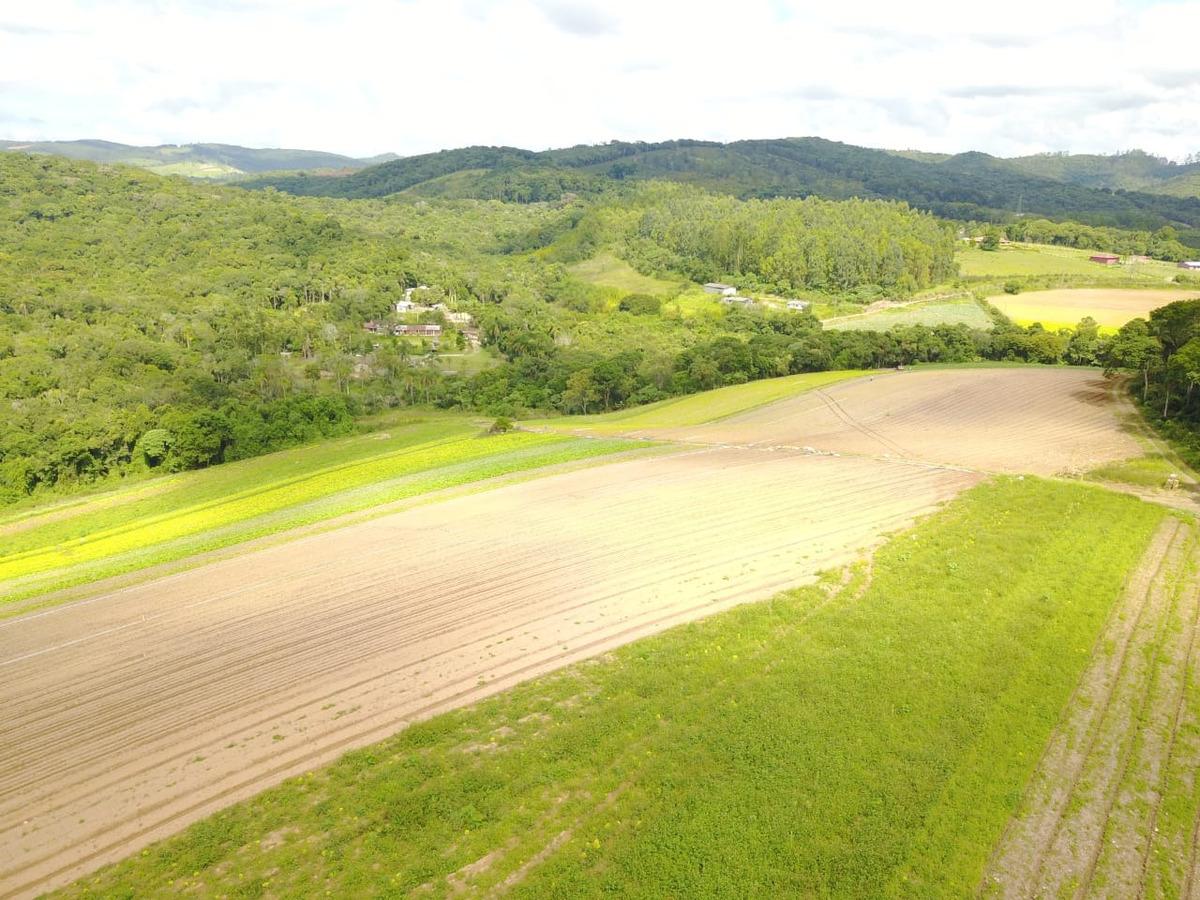 l. terrenos para formação de chácara, fácil acesso, ibiúna