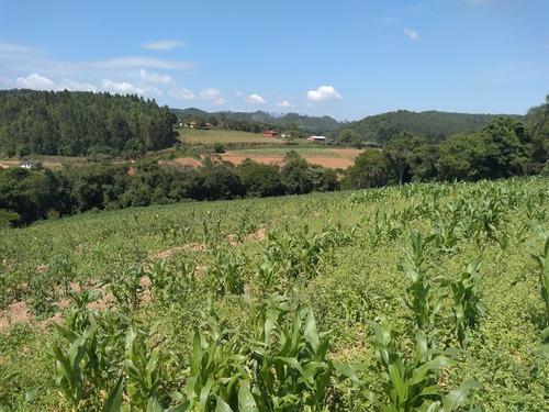 l. terrenos planos, demarcados e bem localizados em ibiúna