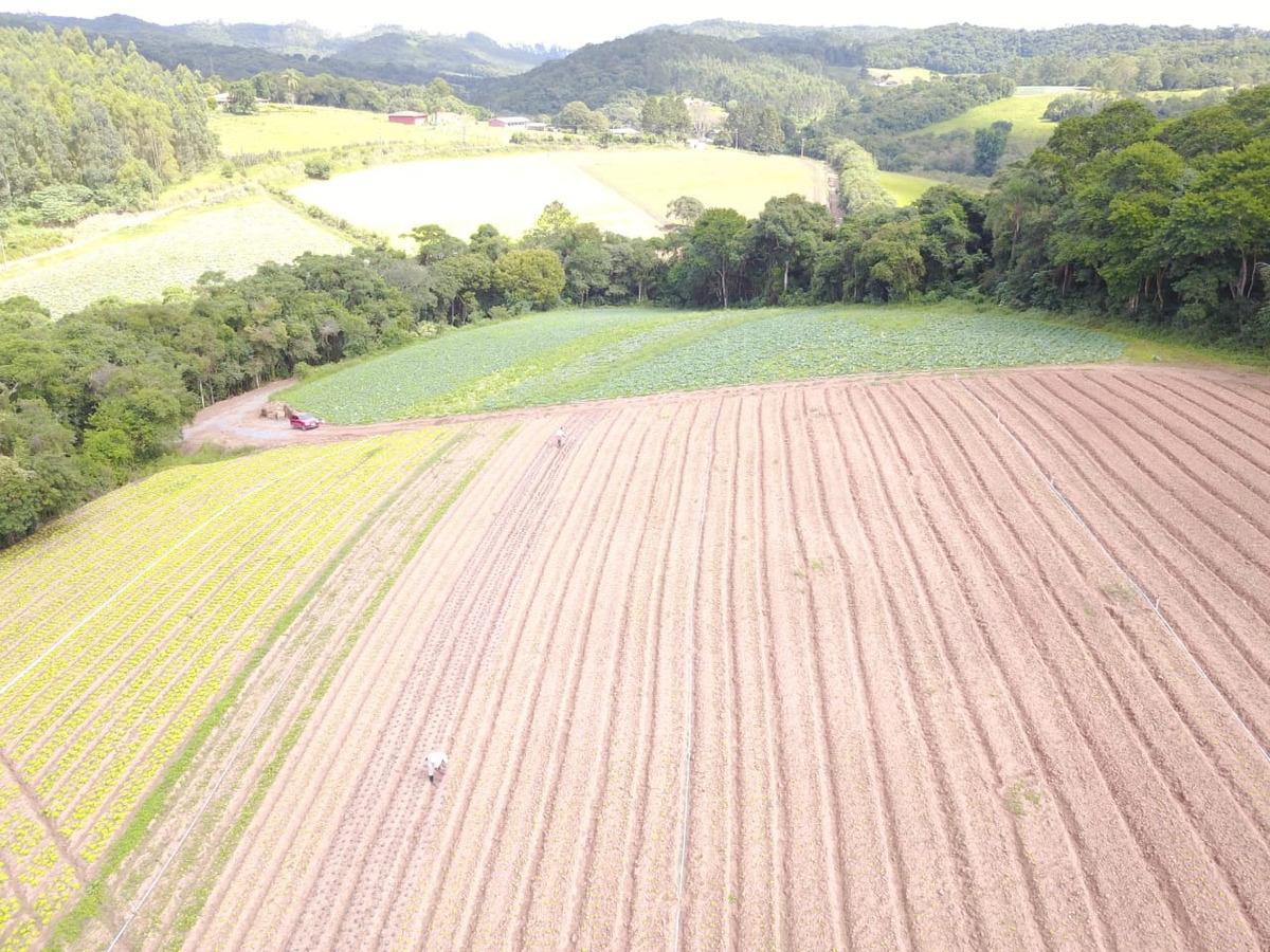 l. terrenos planos em ibiúna 1200m2