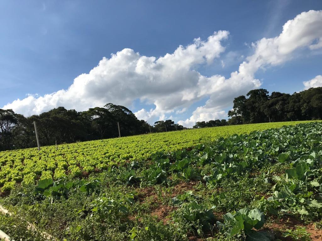 l. terrenos por 33000. em ibiúna, linda vista