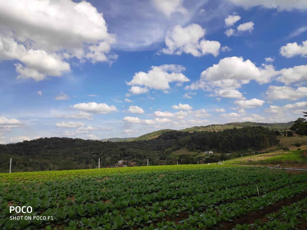 l. terrenos,comércios perto (ibiúna) 1200 mtrs
