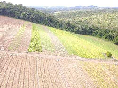 l. vendo área para construção de chácara, ibiúna, 1200m2
