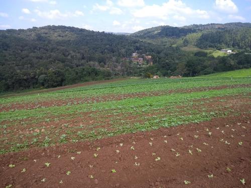 l. vendo área para construção de chácara, ibiúna, 600m2