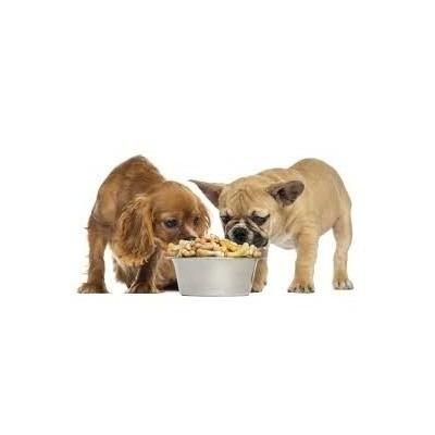 la alimentación del perro (a su correo)promo3x2
