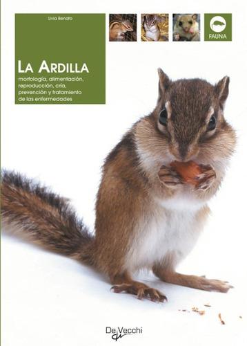 la ardilla: morfologia, alimentacion, reproduccion, cria, pr