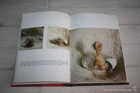 la cria del canario m del pino luengo
