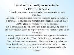 La Flor D La Vida En Madera 40cm Artesanal Geometria Sagrada