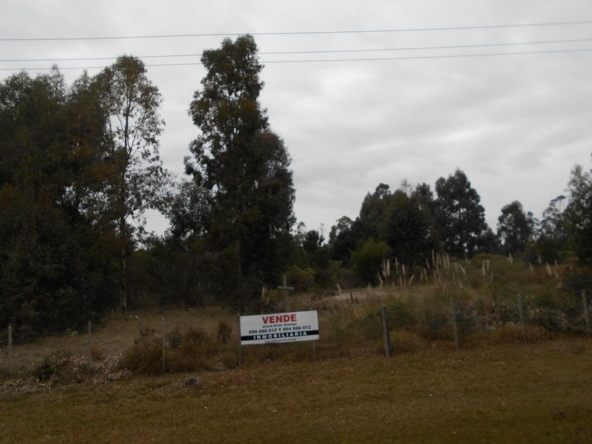 la floresta: terreno 16.000 m2* ruta interbalnearia sur