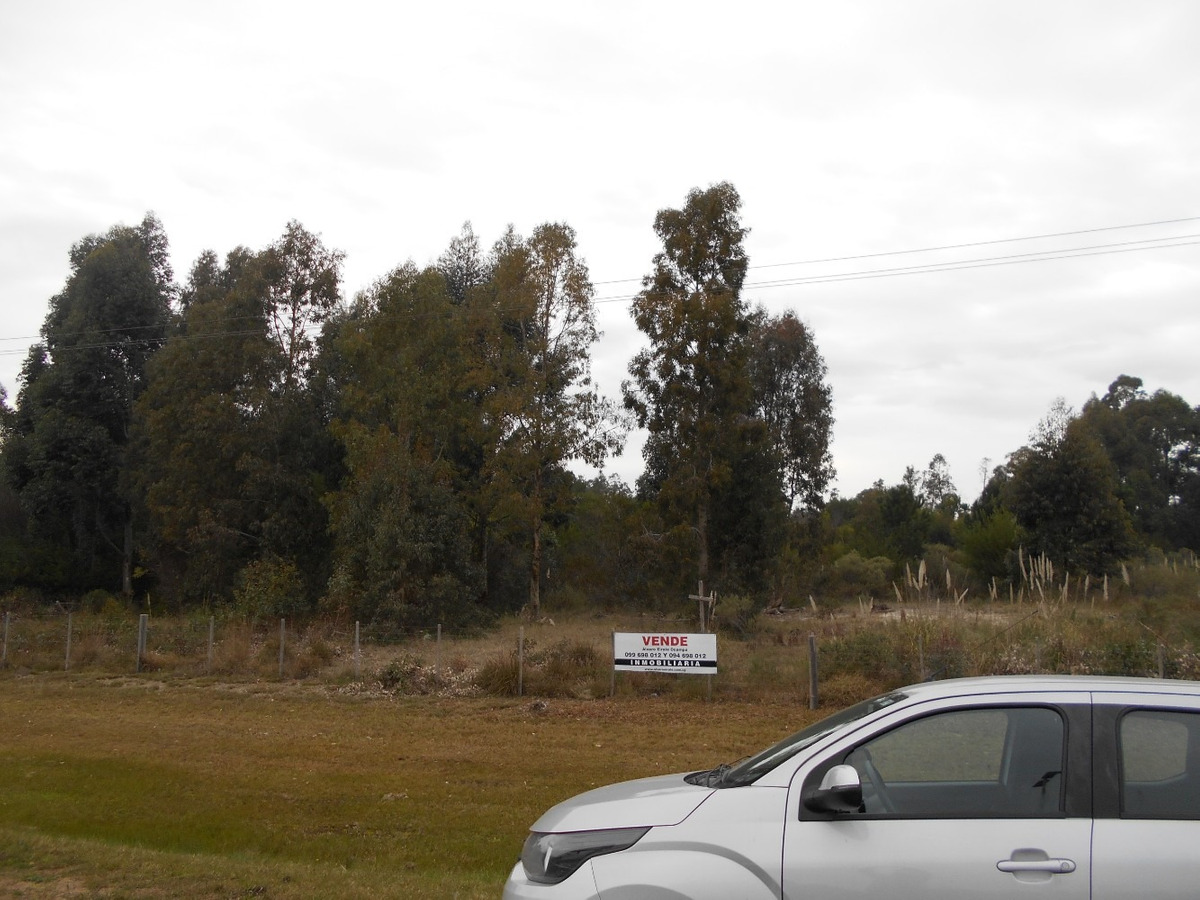la floresta: terreno 26.000 m2* sobre ruta interbalnearia