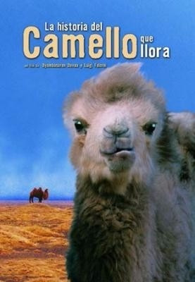 la historia del camello que llora pelicula dvd