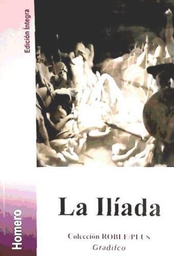 la ilíada(libro otras literaturas)