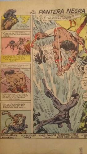 la pantera negra #20, macc