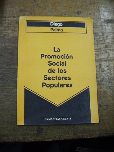 la promoción social de los sectores populares - diego palma