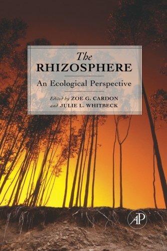 la rizósfera: una perspectiva ecológica