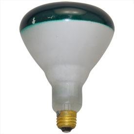 la sustitución de la energía verde 150br40 verde 120v reem