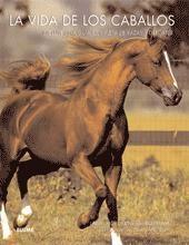 la vida de los caballos(libro ganadería caballar)