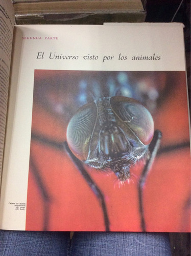la vida. enciclopedia del mundo viviente. animales. tomo ii