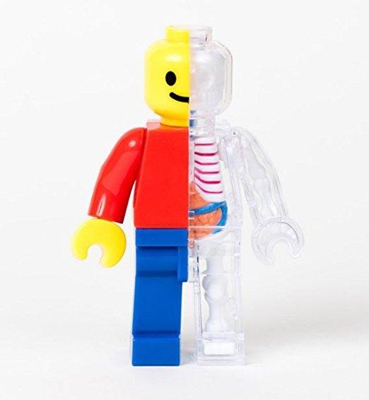 Ladrillo Divertido Del Hombre Anatomía De Jason Freeny - $ 1,381.28 ...