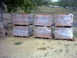 ladrillos fiscales y muralla