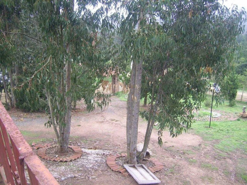 laguna verde, fundo curauma