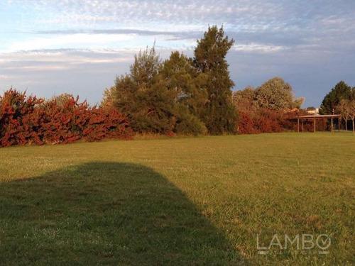 lambo prop -  club de campo la ranita -manzanares-pilar