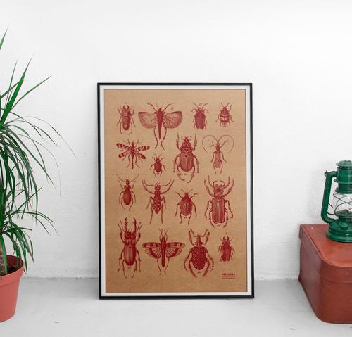lámina cuadro pared decorativa papel kraft insectos