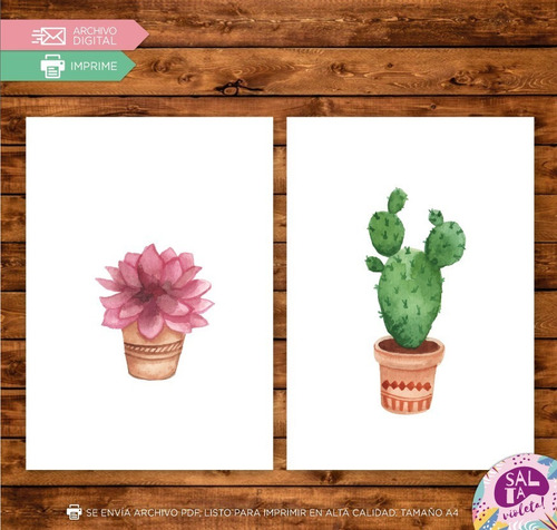 laminas para cuadros imprimibles cactus - modelo 1