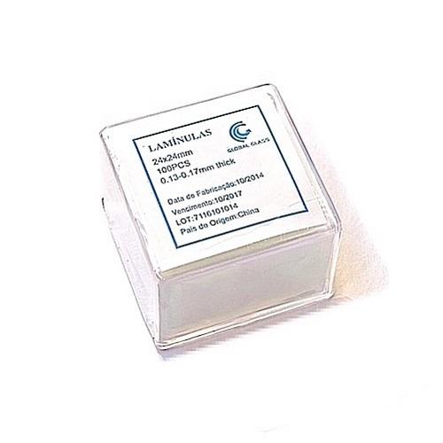 f9a1fdf52378 Lamínula De Vidro (24 X 24)mm 100 Unidades - Global Trade - R$ 10,38 ...