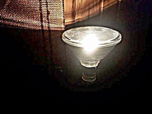 lampara halogena par38 120 w