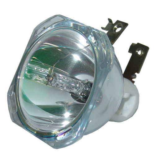 lámpara phoenix para infocus big in65 proyector proyection d