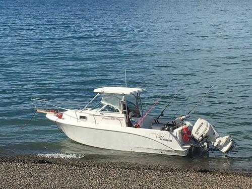 lancha brenda 690 fisher