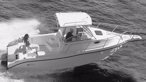 lancha fishing 25 wa raptor mercury 115 4 tempos efi pesca