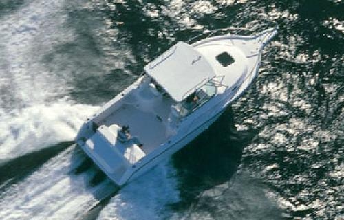 lancha fishing 28 w a raptor mercury 300 verado pesca