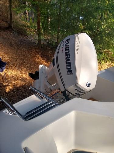 lancha marine sur quicksilver 2011