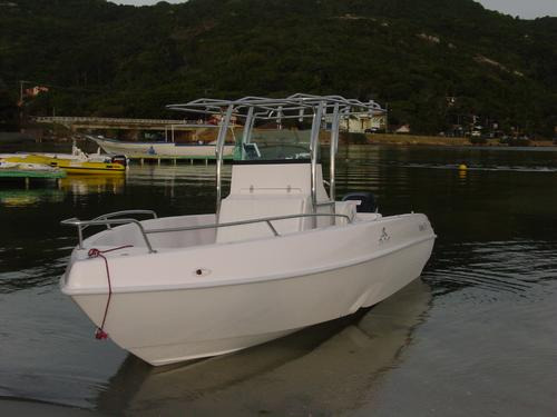 lancha sea crest fishing 215 mercury 115 hp elpt ct 4t 2020
