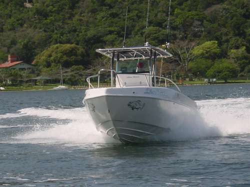 lancha sea crest fishing 245 mercury 250hpxl4.6lefi4t+ 2019