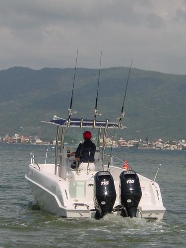 lancha sea crest fishing 245 parelha e-tech 130 hp dpl 2019