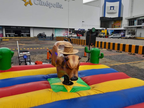 landy renta de toro mecanico