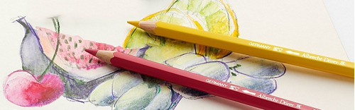 lapices colores faber castell albretch durer x24